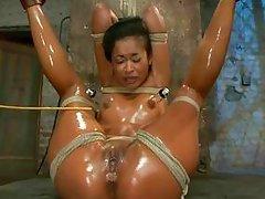 oiled brunette in bondage action