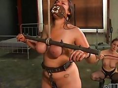 whore punished and tortured