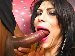 shemale in pantyhose gets ass kissed and fingered