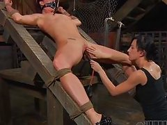 mistress whips her slave's cunt